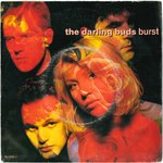 "DARLING BUDS, THE - Burst - 7"" + P/S (VG/VG) (M)"