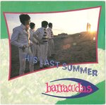 "BARRACUDAS, THE - His Last Summer - 7"" + P/S (EX/EX-) (M)"