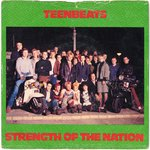 "TEENBEATS, THE - Strength Of The Nation - 7"" + P/S (VG/VG+) (M)"