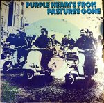V/A - Purple Hearts From Pastures Gone DOUBLE LP (VG/VG+/VG-) (M)